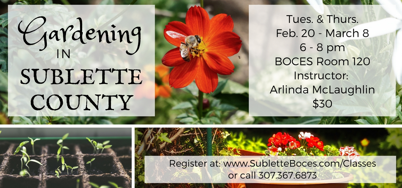 Gardening In Sublette County